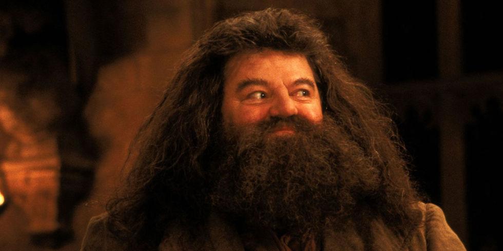 Hagrid Harry Potter