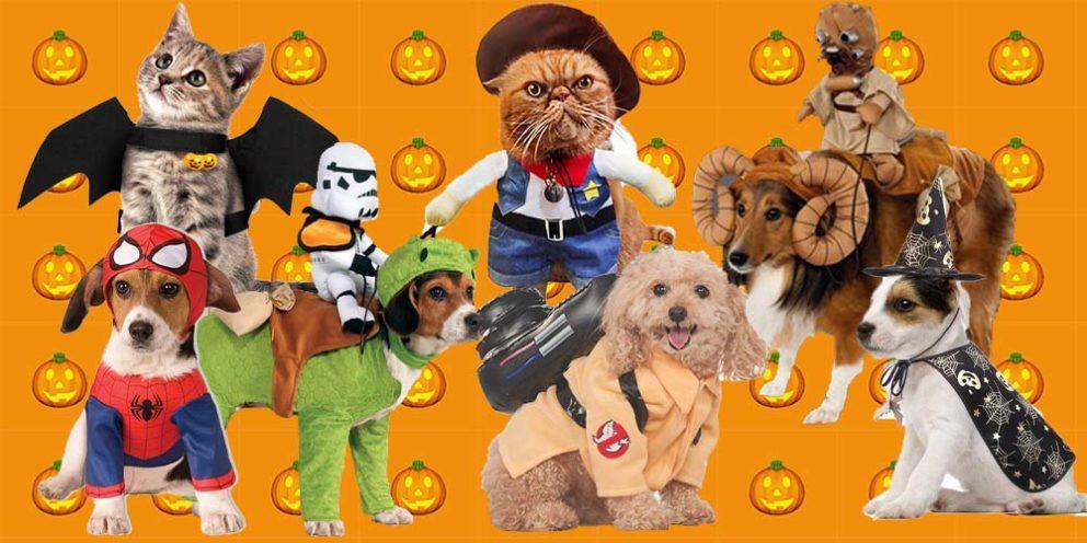 Amazon Halloween Outfits