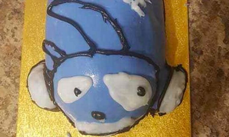 Sensational Inappropriate Sonic The Hedgehog Cake Fail Goes Viral Funny Birthday Cards Online Bapapcheapnameinfo